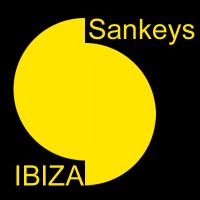 Sankeys logo